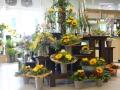 Blumen Interfleur Bad Zwischenahn Rewe