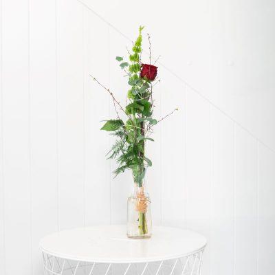 einzelne rote Rose und Muschelblume