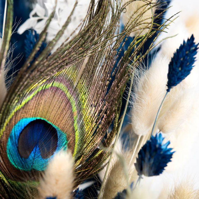 Pfauenfeder im Detail fotografiert